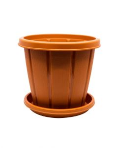 Cosmoplast Woodgrain Pot With Tray 8 Inches