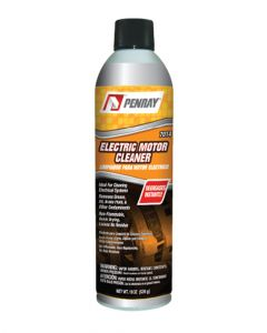 Penray Electric Motor Cleaner